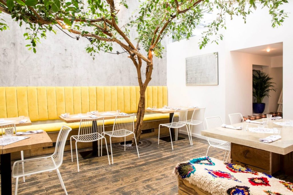 Wooden floor, chairs and a tree in pi pizza