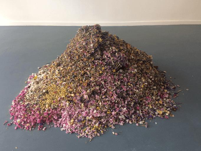 Dust, by Rebecca Louise Law